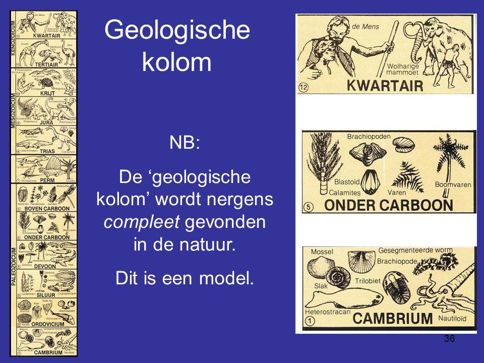 De 'geologische kolom' wordt nergens compleet gevonden in de natuur.