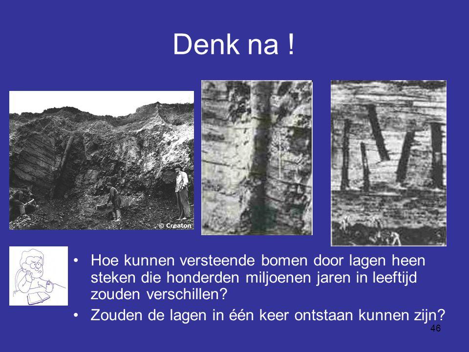 Denk na ! Hoe kunnen versteende bomen door lagen heen steken die honderden miljoenen jaren in leeftijd zouden verschillen