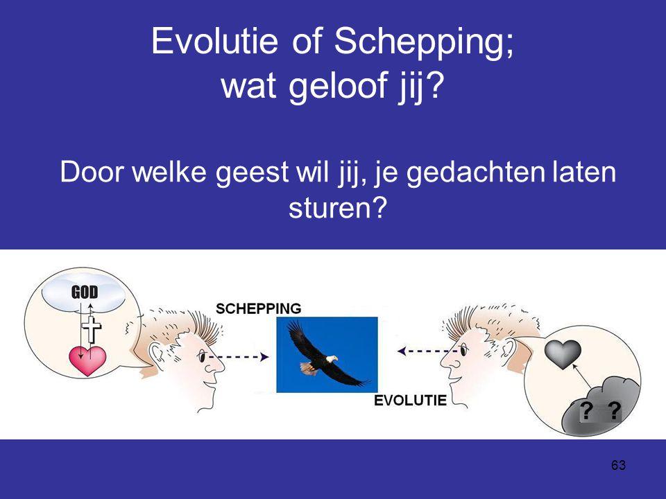 Evolutie of Schepping; wat geloof jij