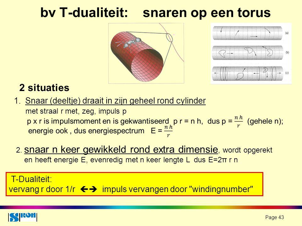 bv T-dualiteit: snaren op een torus
