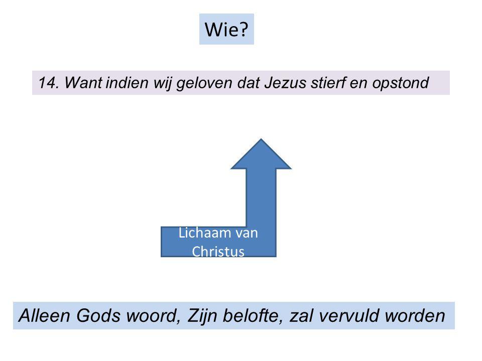 Wie Alleen Gods woord, Zijn belofte, zal vervuld worden