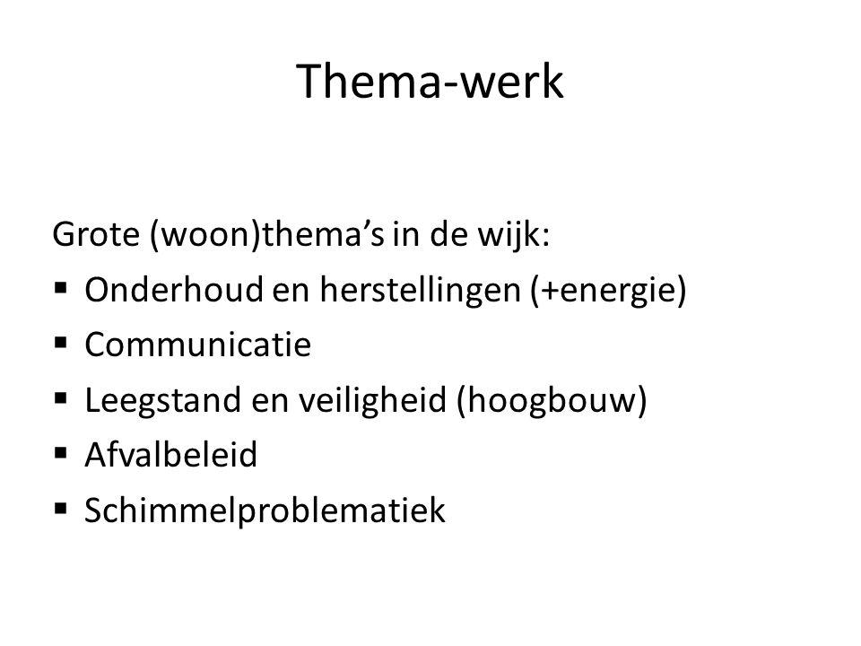 Thema-werk Grote (woon)thema's in de wijk: