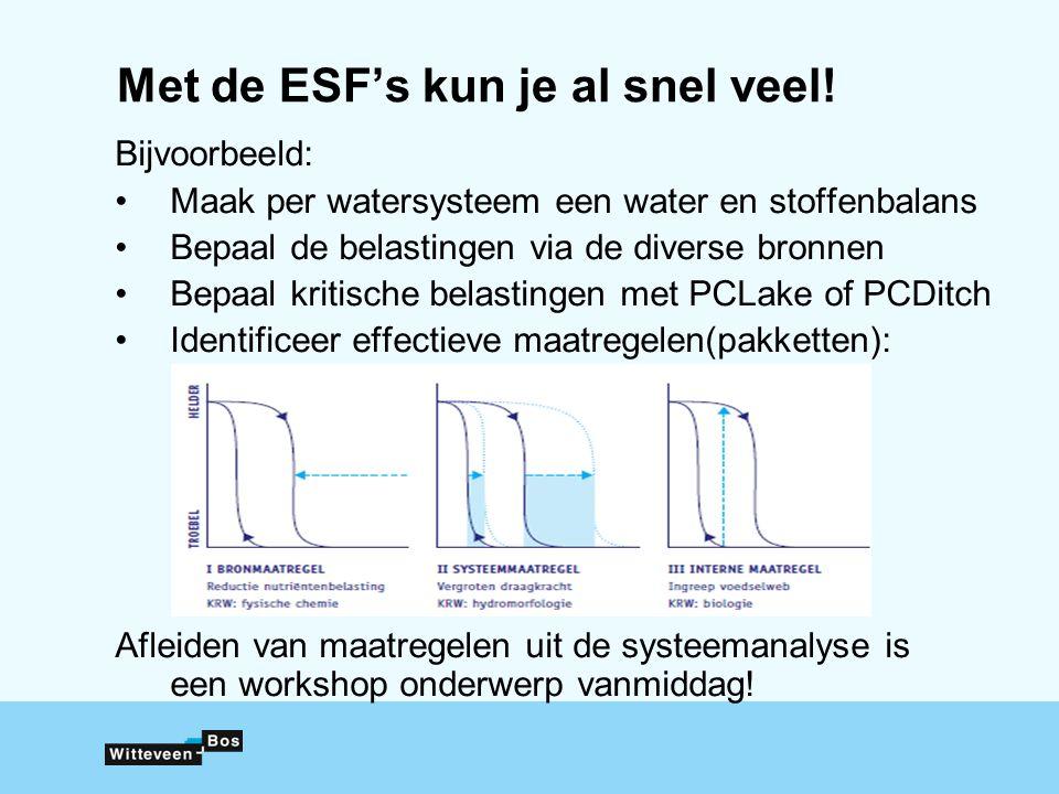 Met de ESF's kun je al snel veel!