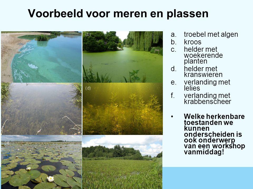 Voorbeeld voor meren en plassen