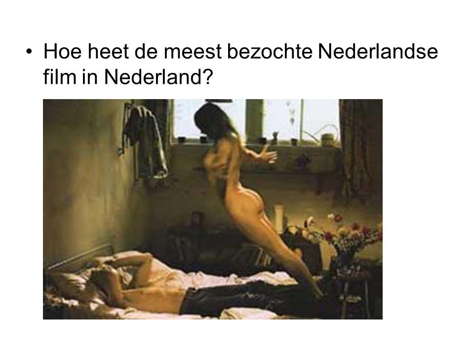 Hoe heet de meest bezochte Nederlandse film in Nederland