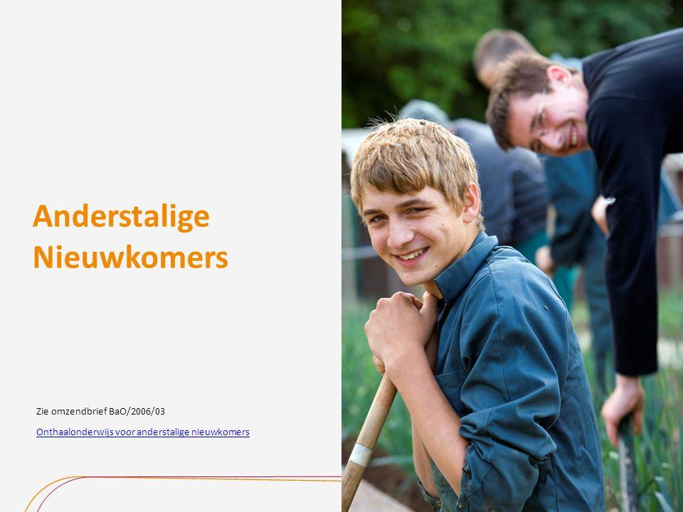 Anderstalige Nieuwkomers