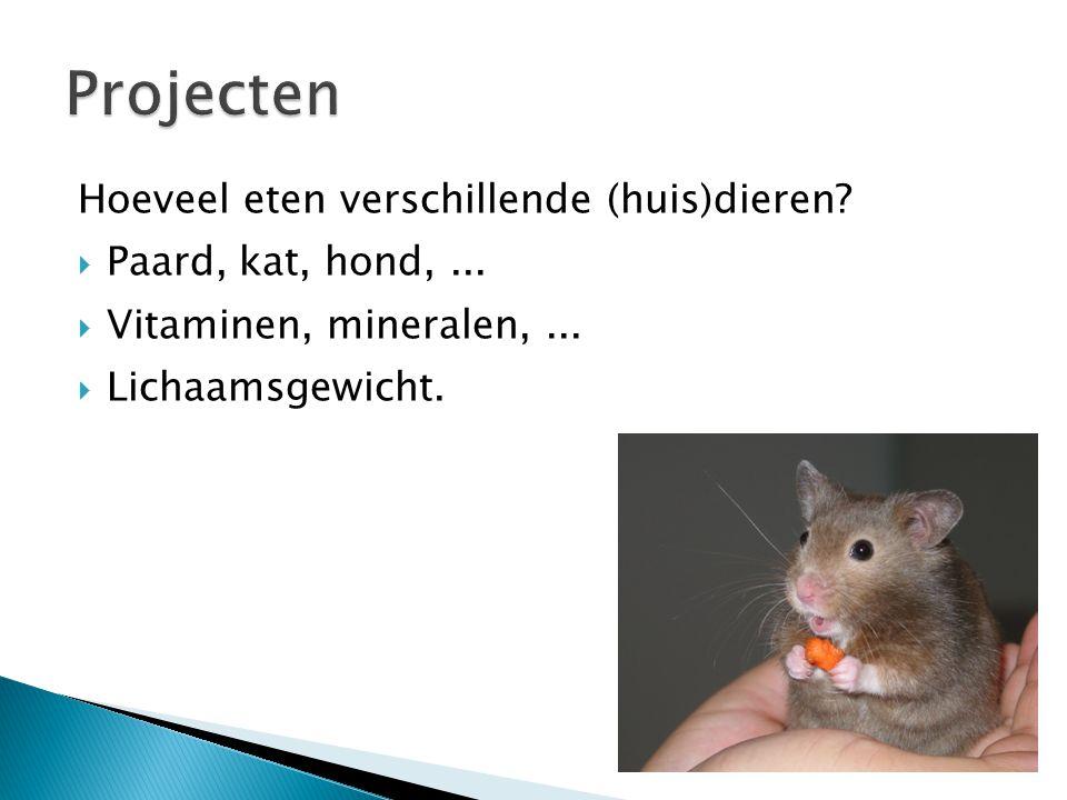 Projecten Hoeveel eten verschillende (huis)dieren