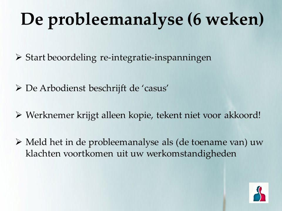 De probleemanalyse (6 weken)