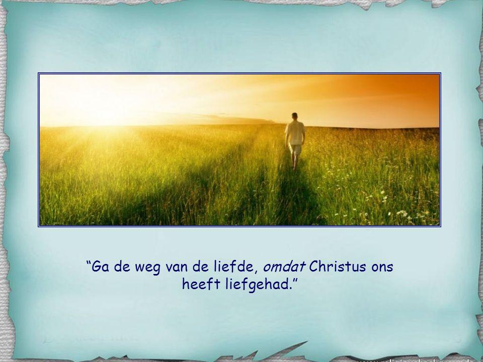 Ga de weg van de liefde, omdat Christus ons heeft liefgehad.
