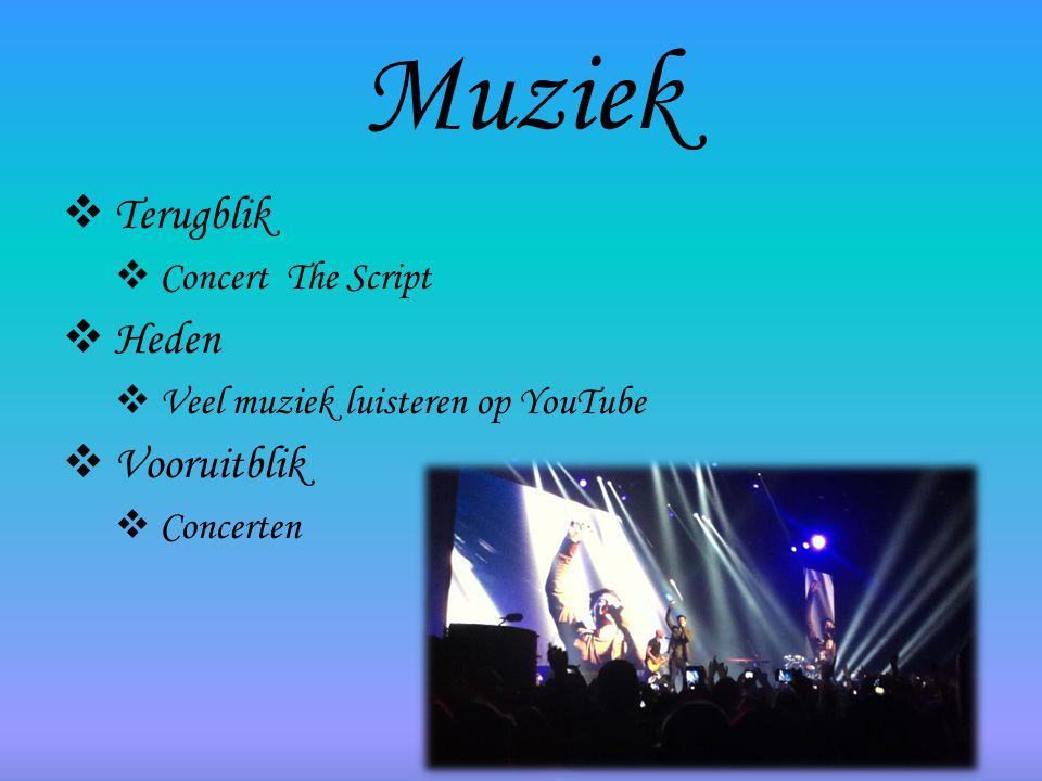 Muziek Terugblik Heden Vooruitblik Concert The Script