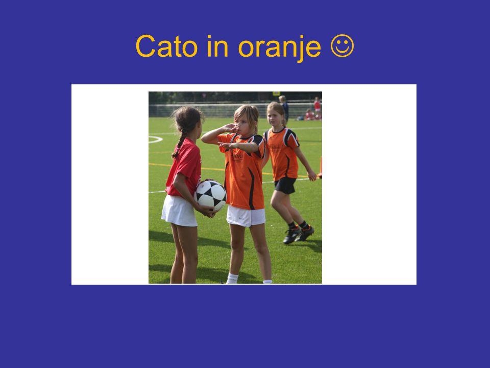 Cato in oranje 