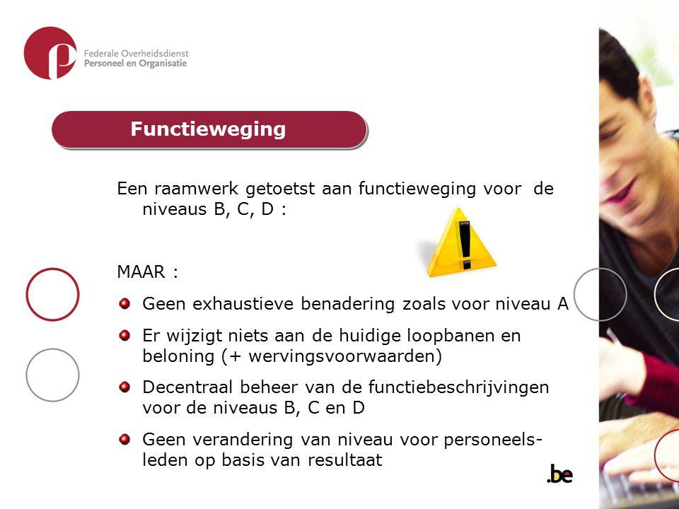Functieweging Een raamwerk getoetst aan functieweging voor de niveaus B, C, D : MAAR : Geen exhaustieve benadering zoals voor niveau A.