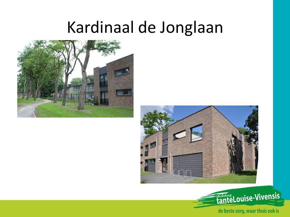 Kardinaal de Jonglaan