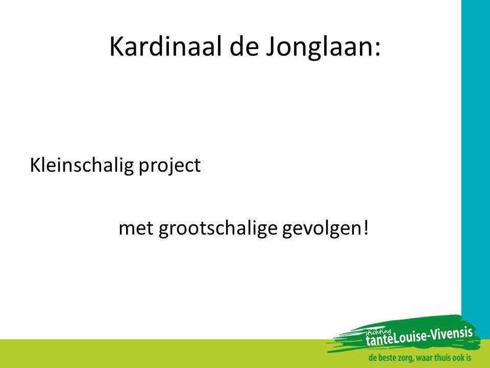 Kardinaal de Jonglaan: