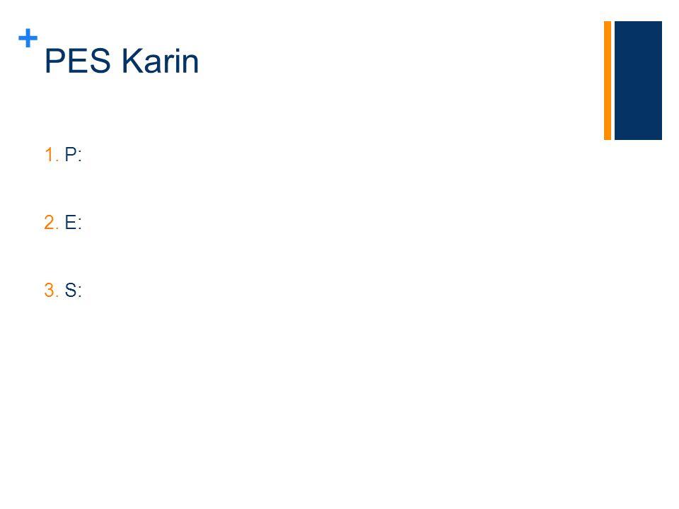PES Karin P: E: S: