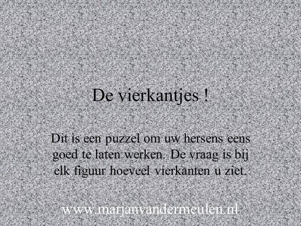 De vierkantjes ! www.marjanvandermeulen.nl