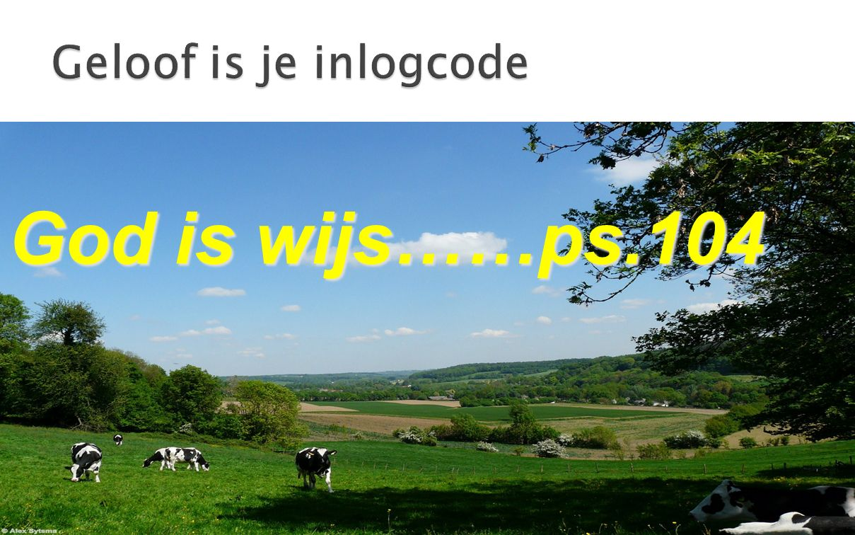 Geloof is je inlogcode God is wijs……ps.104