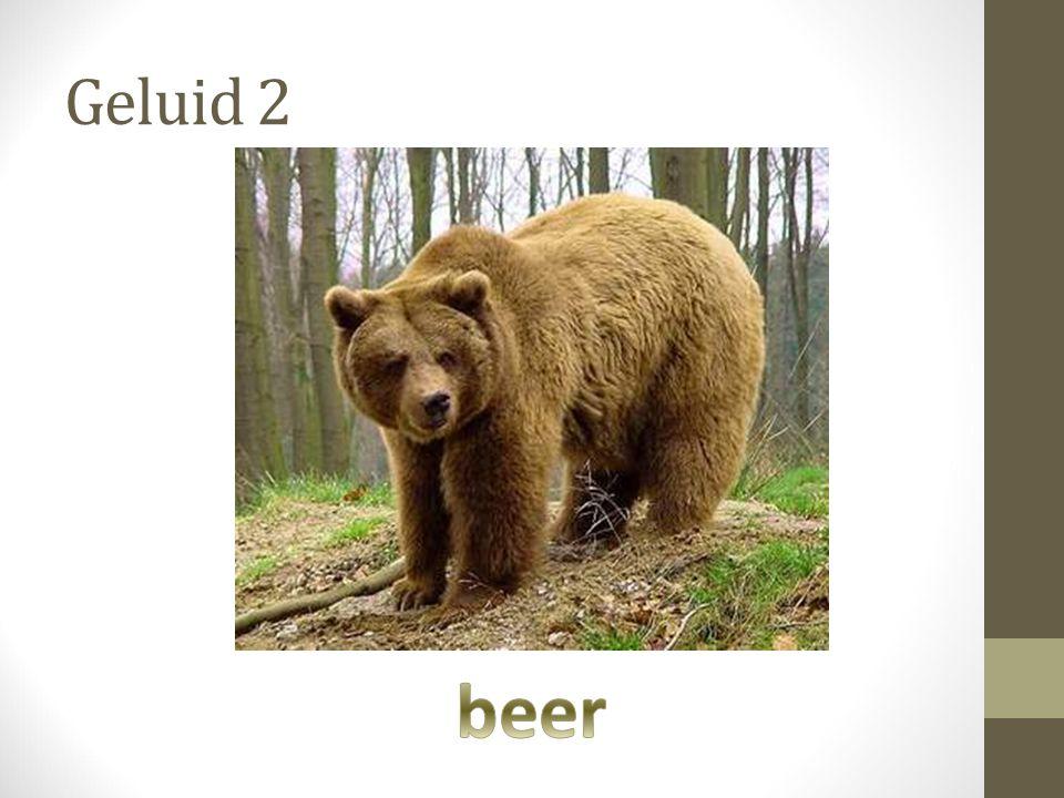 Geluid 2 beer