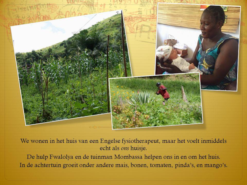 De hulp Fwalolya en de tuinman Mombassa helpen ons in en om het huis.