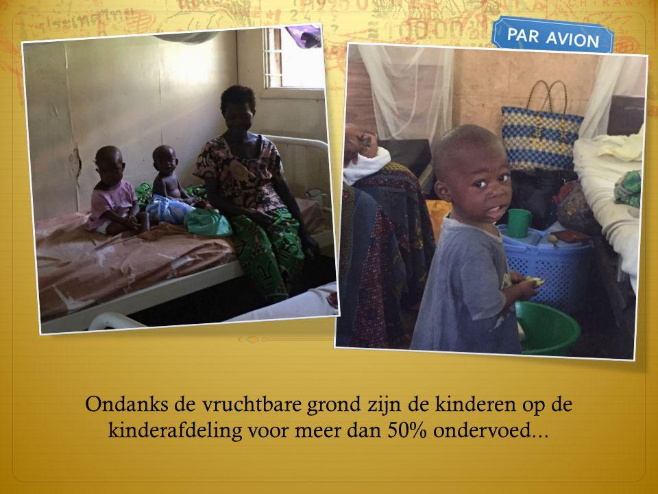 Ondanks de vruchtbare grond zijn de kinderen op de kinderafdeling voor meer dan 50% ondervoed...