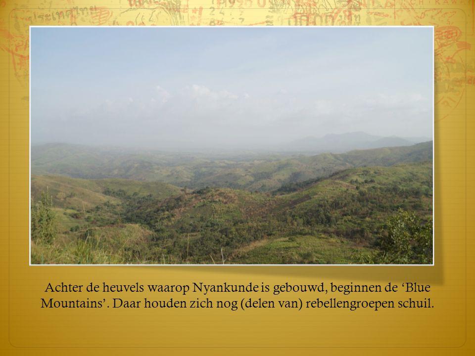 Achter de heuvels waarop Nyankunde is gebouwd, beginnen de 'Blue Mountains'.