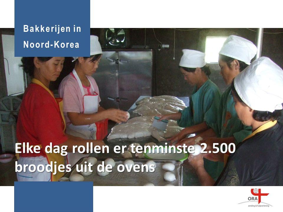 Elke dag rollen er tenminste 2.500 broodjes uit de ovens