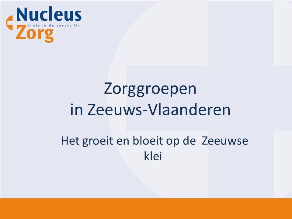 Zorggroepen in Zeeuws-Vlaanderen