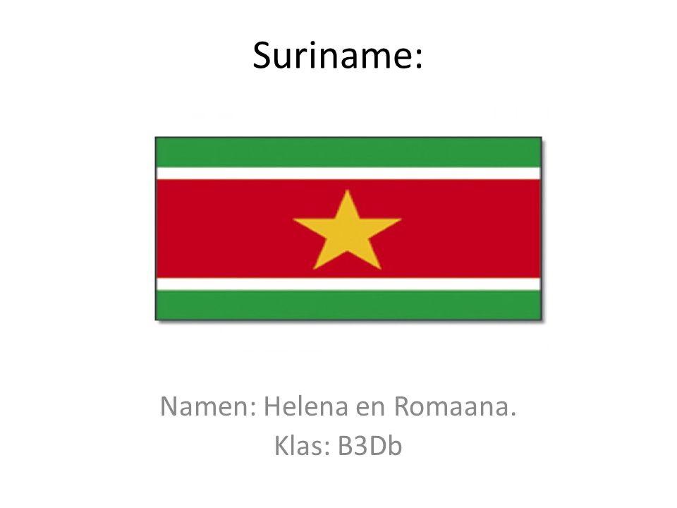 Namen: Helena en Romaana. Klas: B3Db