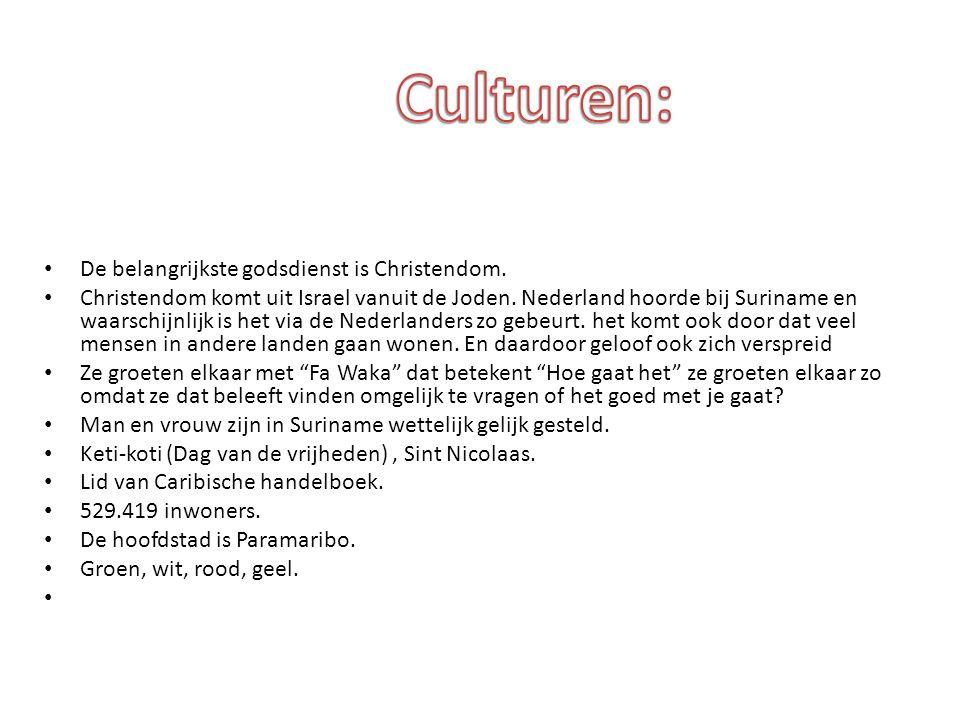 Culturen: De belangrijkste godsdienst is Christendom.