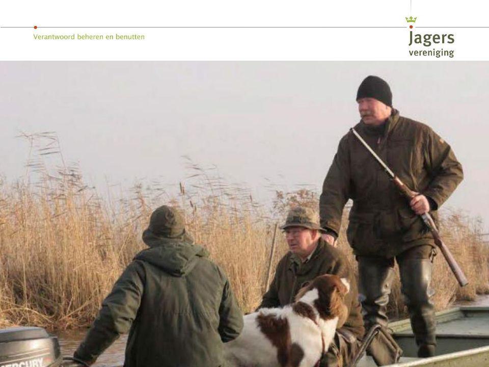 Jagen is het zoeken naar een evenwicht tussen vele belangen: landbouw, natuur, verkeersveiligheid en dierenwelzijn