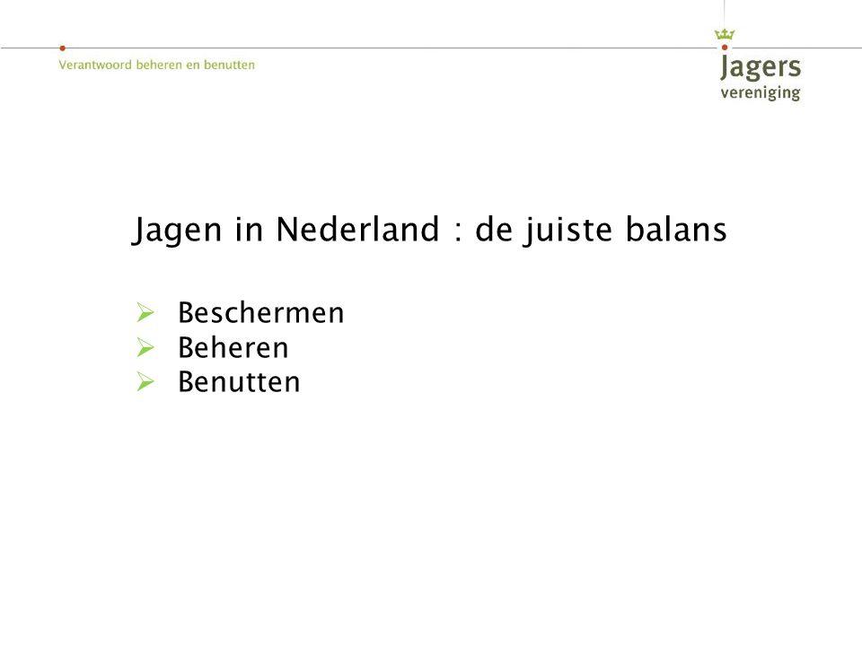 Jagen in Nederland : de juiste balans