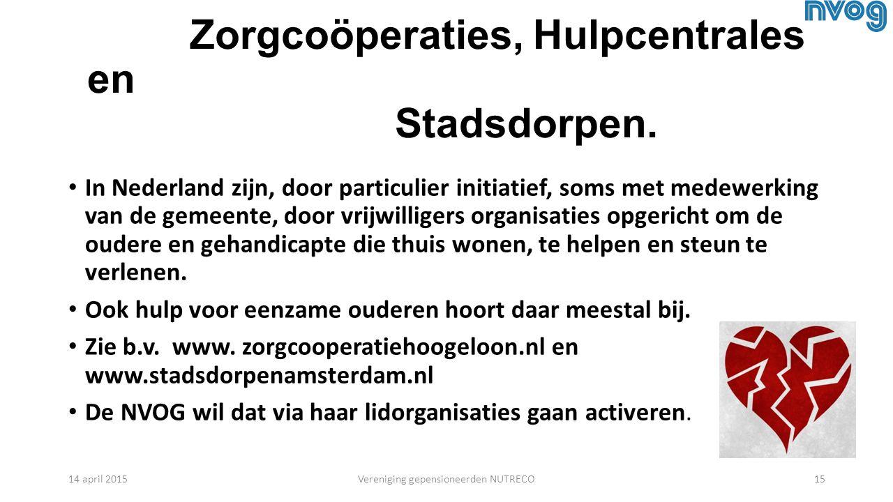 Zorgcoöperaties, Hulpcentrales en Stadsdorpen.
