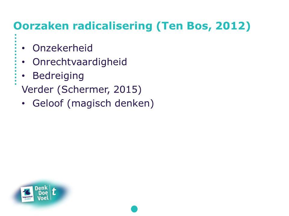 Oorzaken radicalisering (Ten Bos, 2012)