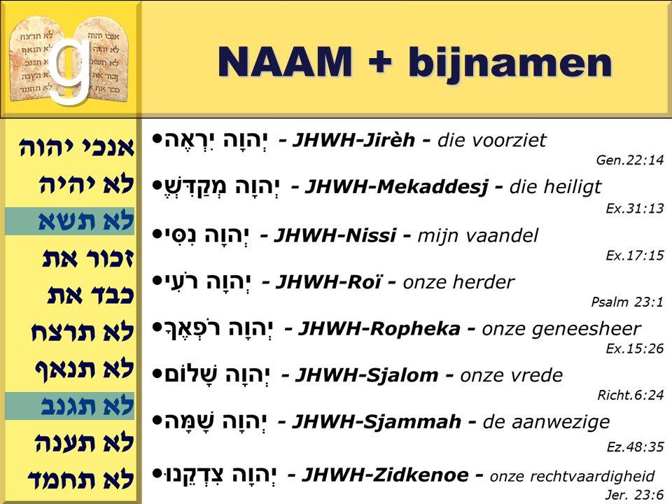 g NAAM + bijnamen Gerard J.Wijtsma