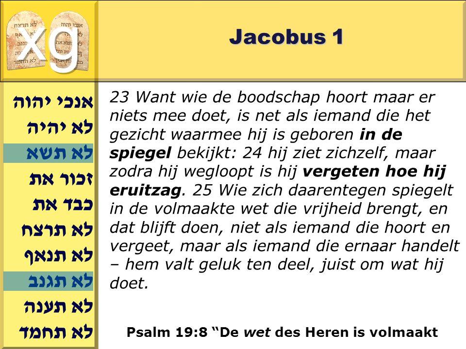 xg Jacobus 1.