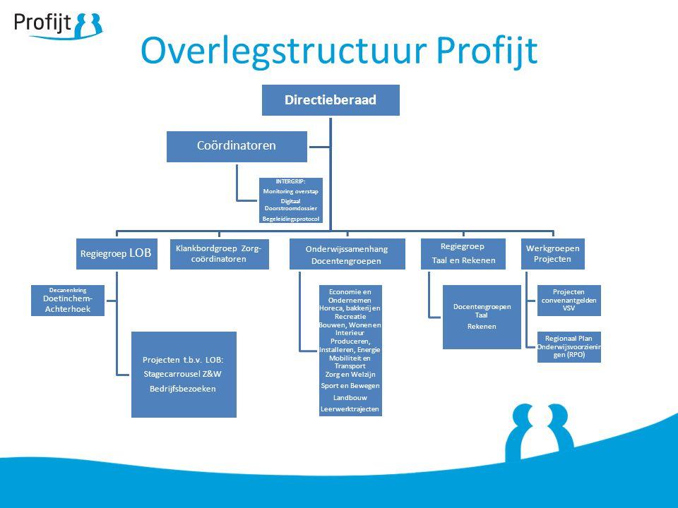 Overlegstructuur Profijt