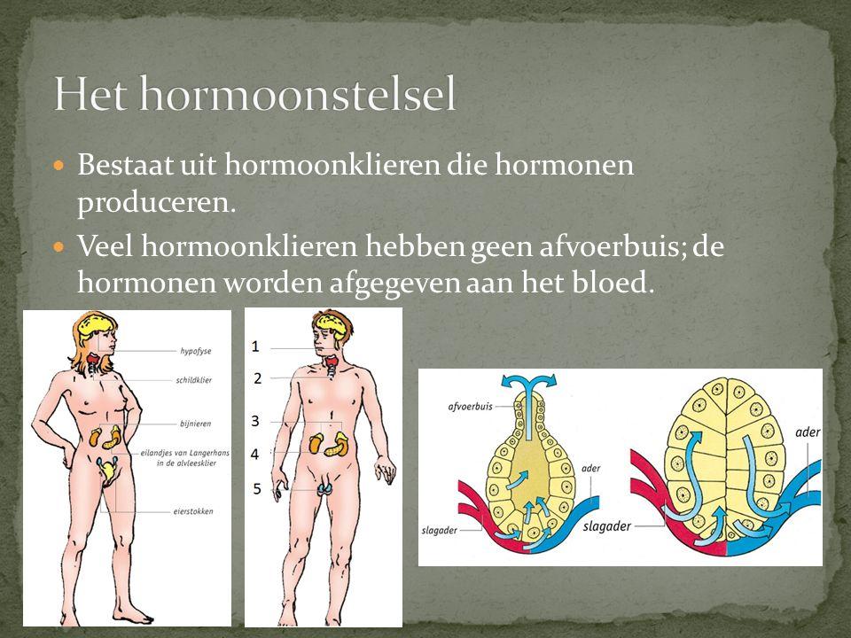 Het hormoonstelsel Bestaat uit hormoonklieren die hormonen produceren.