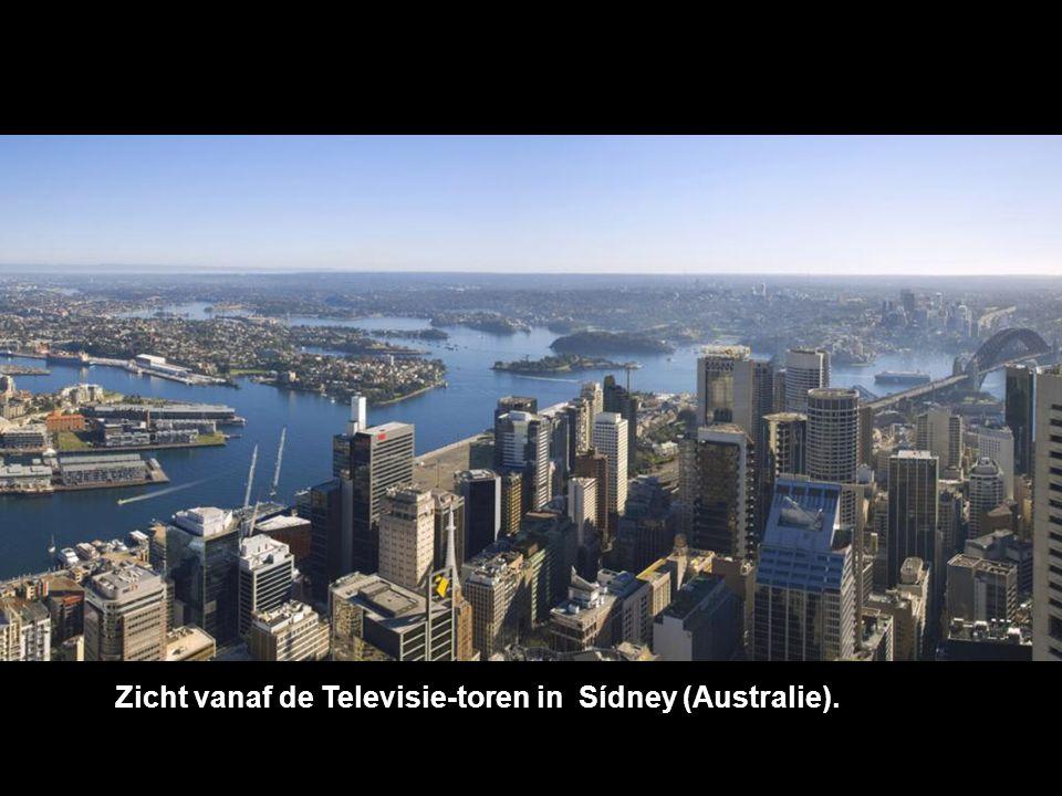 Zicht vanaf de Televisie-toren in Sídney (Australie).