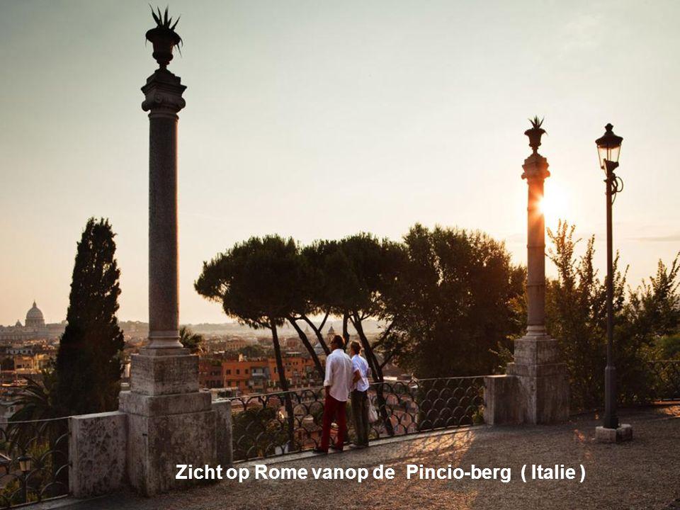 Zicht op Rome vanop de Pincio-berg ( Italie )