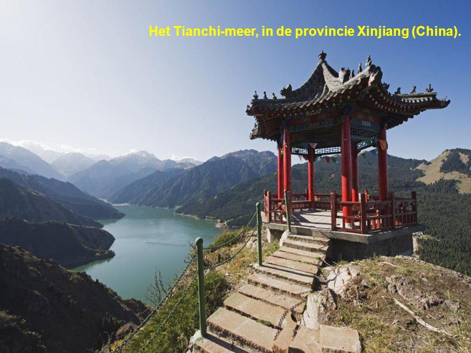 Het Tianchi-meer, in de provincie Xinjiang (China).