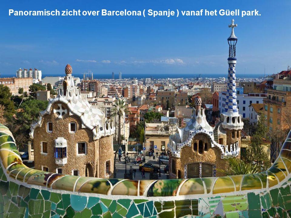 Panoramisch zicht over Barcelona ( Spanje ) vanaf het Güell park.