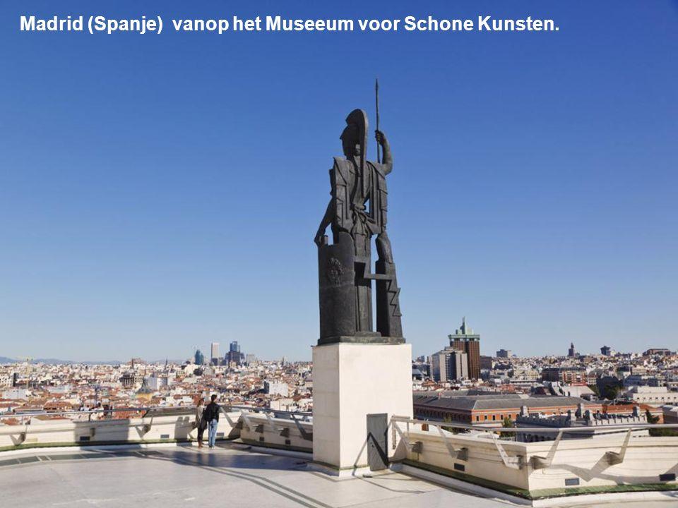 Madrid (Spanje) vanop het Museeum voor Schone Kunsten.