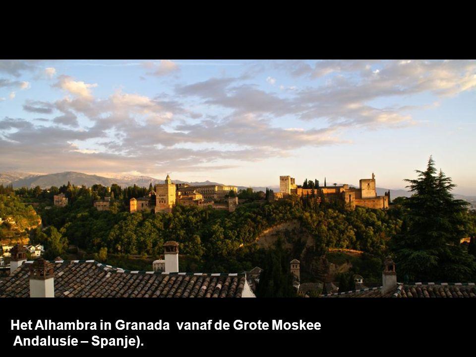 Het Alhambra in Granada vanaf de Grote Moskee