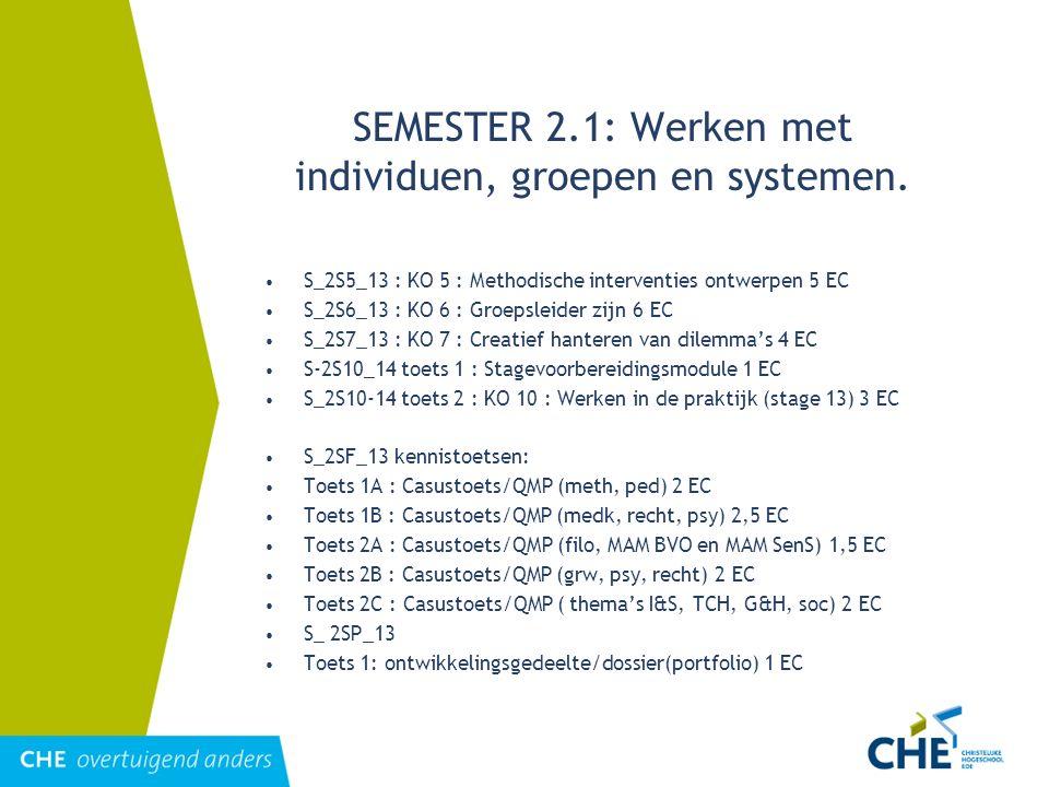 SEMESTER 2.1: Werken met individuen, groepen en systemen.
