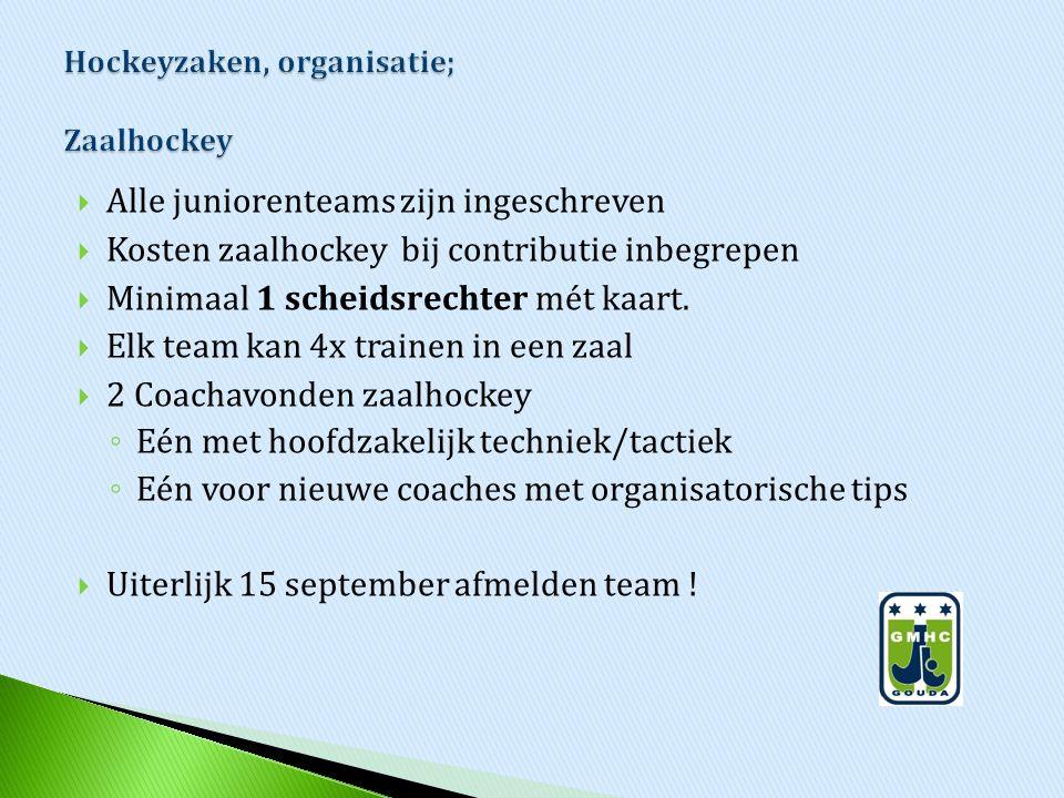 Hockeyzaken, organisatie; Zaalhockey