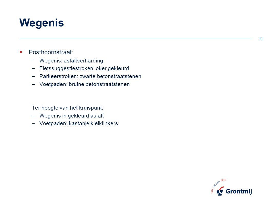 Wegenis Posthoornstraat: Wegenis: asfaltverharding