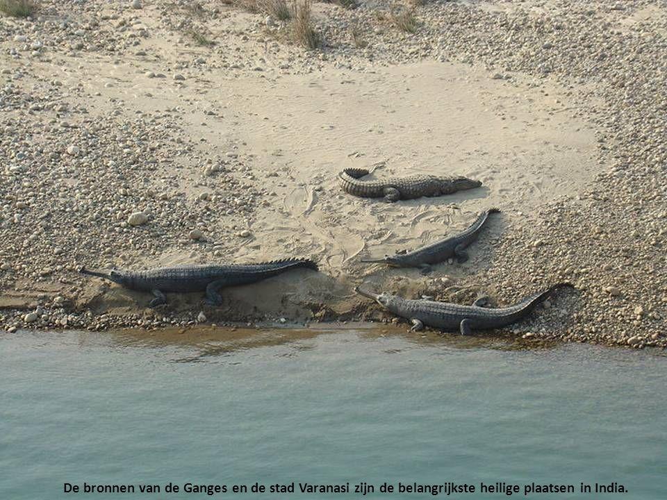 De bronnen van de Ganges en de stad Varanasi zijn de belangrijkste heilige plaatsen in India.