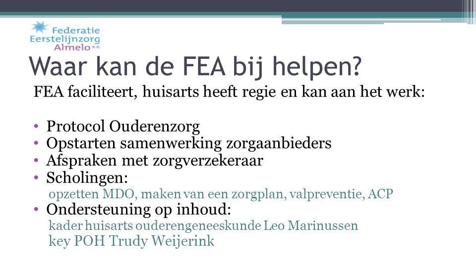 Waar kan de FEA bij helpen