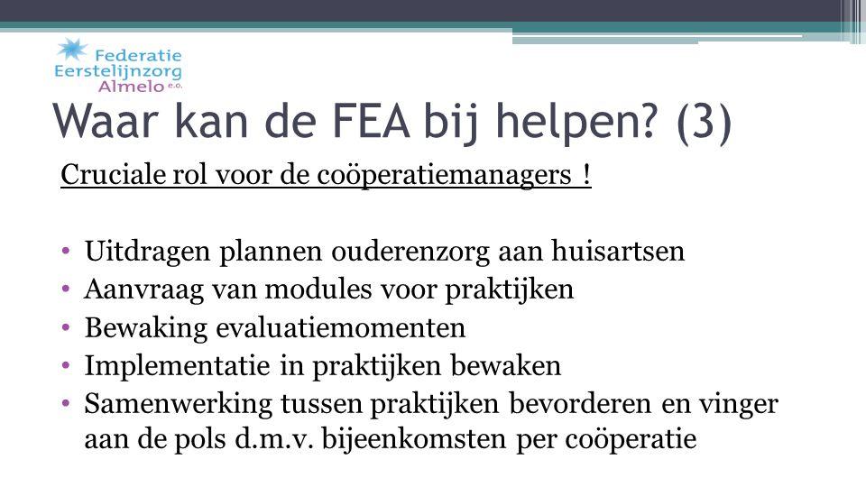Waar kan de FEA bij helpen (3)