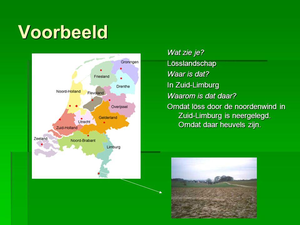 Voorbeeld Wat zie je Lösslandschap Waar is dat In Zuid-Limburg